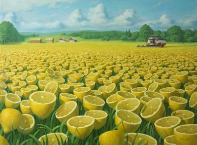 Сбор урожая 3